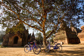 Tourist transport: bicycles outside a temple  in Bagan, Myanmar — Stock Photo
