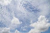 Cielo blu con nube closeup — Foto Stock