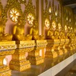 Row of golden monk buddhist statues in thai temple, Chaimongkhol — Stock Photo