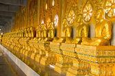 Row of golden monk buddhist statues — Stock Photo