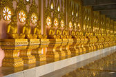 Row of golden monk buddhist statues in thai temple, Chaimongkhol — Stok fotoğraf