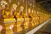 Hilera de estatuas budistas de oro monje en templo tailandés, chaimongkhol — Foto de Stock