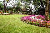 Mae Fah Luang Garden,locate on Doi Tung, Chiangrai Province, Thailand — Foto Stock