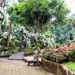 Stock Photo: Mae Fah Luang Garden,locate on Doi Tung, Chiangrai Province, Thailand