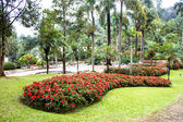 Mae Fah Luang Garden,locate on Doi Tung, Chiangrai Province, Thailand — Stock Photo