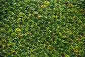 バナナの葉でタイ風アート — ストック写真
