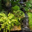 Small Waterfall — Stock Photo #36434587