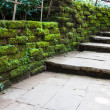 Walkway with Old mossy stone wall — Stock Photo
