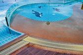スイミング プール. — ストック写真