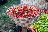 Czerwona papryka chili — Zdjęcie stockowe