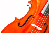 Violin isolated on white background — Stock Photo