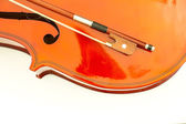 Violin isolate on white background — Stock Photo