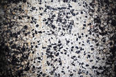 Exposed aggregate concrete texture background — Stockfoto