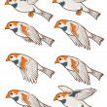 Sparrow Flying Animation — Stock Vector