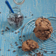 Cookies and jar with chocolate drops — Stock Photo
