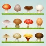 Mushrooms on grass — Stock Vector #18465705