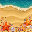 Stock Vector: Shells on beach
