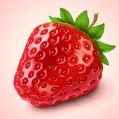 Strawberry — Stock Vector