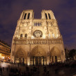 Notre Dame in night with fisheye on Paris - Stock Photo