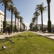 Постер, плакат: RABAT FEBRUARY 23: The Mohammed V avenue on February 23 2013