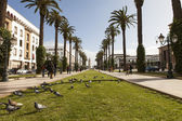 RABAT - FEBRUARY 23: The Mohammed V avenue on February 23, 2013 — Stock Photo