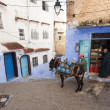 CHEFCHAOUEN, MOROCCO, NOVEMBER 20: suppllying stores of city of — Stock Photo #36911839