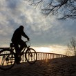Stock Photo: Silhouette of a man on muontain-bike, sunrise