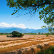 A red harvester in work with mountains in background — Stock Photo