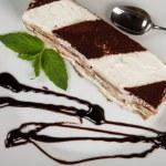 Slice of self-made italian tiramisu dessert served on a plate — Stock Photo #42612089