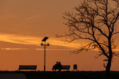 Romantic Couple on a Bench on sunset under a tree — Foto de Stock