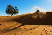 Berber playing and throwing with sands in Desert Sahara, creatin — Stockfoto