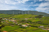 Landscape with wind generators — Stock Photo