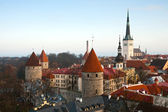 The tower of the old Tallinn — Stock Photo