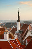The view from the top of the old Tallinn — Stock Photo
