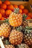 ананасы и апельсины — Стоковое фото
