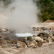 Stock Photo: Fumarole thermal springs