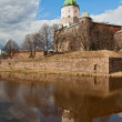 Vyborg Castle in a sunny spring day — Stock Photo #24609919
