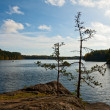 Forest lake in Finland — Stock Photo
