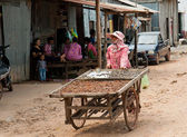 The Cambodian life — Stock Photo