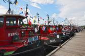 Regatta old motor ship — Stock fotografie