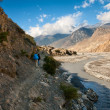 Trekking in the Himalayas — Stock Photo #45783493