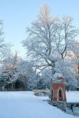 Winter in the Catherine Park — Stock Photo