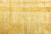 Papirus — Zdjęcie stockowe