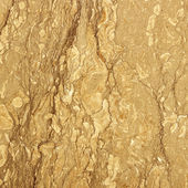 Brown marble background — Stock Photo