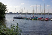 Veleros en lago de hamburgo — Foto de Stock