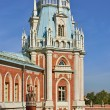Palaces in Moscow. Tsaritsyno. - Stock Photo