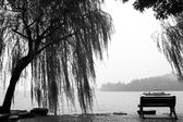 Nice view in Black and white — Stock Photo