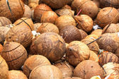 Coconut Shells — Stock Photo