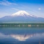 Постер, плакат: Fuji mount