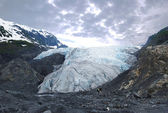 Exit Glacier — Stock Photo
